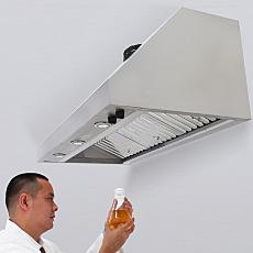 Wall-Mount Canopy Laboratory Fume Hood with Model