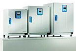 Heratherm General Protocol Microbiological Incubators by Thermo Fisher Scientific