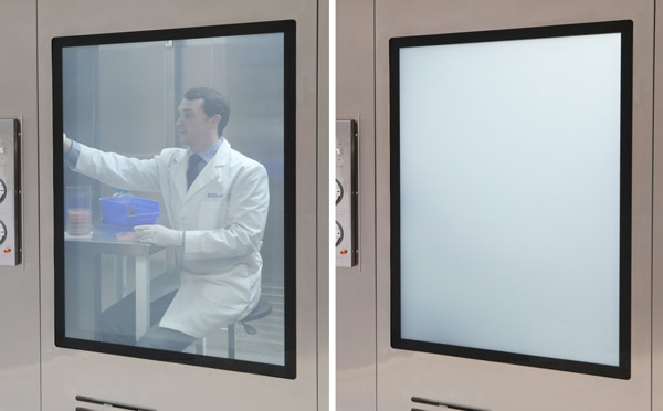 Cleanroom Window, Features, Styles, and Applications