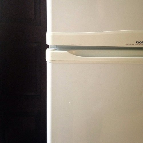 Choosing the Right Laboratory Refrigerator or Freezer