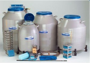 Insulated cryogenic containers for storage of cell samples