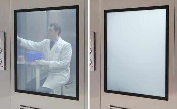 BioSafe Switch-Glass Privacy Windows
