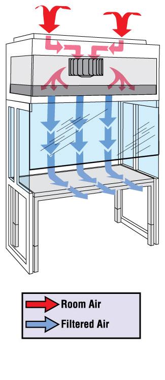 Vertical Laminar Flow Hood Airflow Diagram
