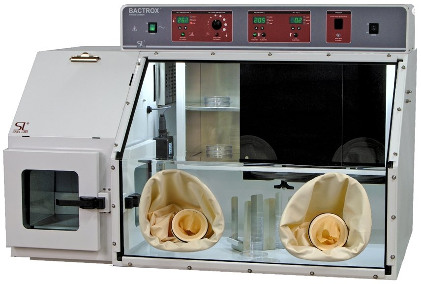 Bactrox Hypoxia chamber from Shel Lab